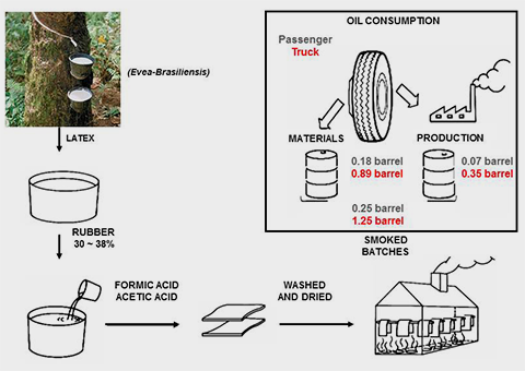Natural Rubber Production Process
